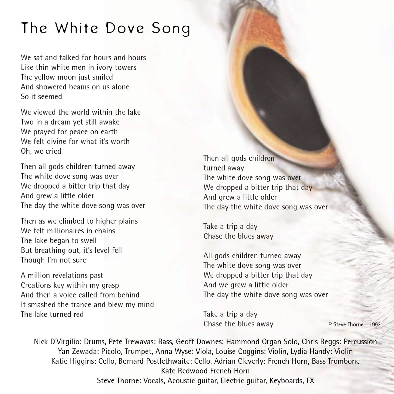 10 - The White Dove Song